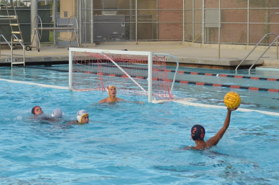 Water+Polo+Team+Higher+Shooting+for+Further+Goals
