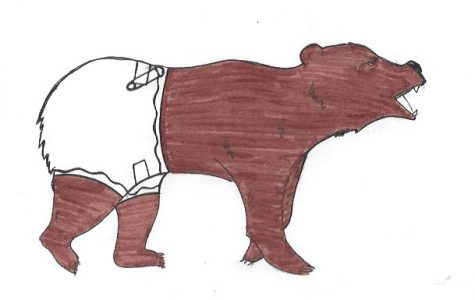 Bear Briefs