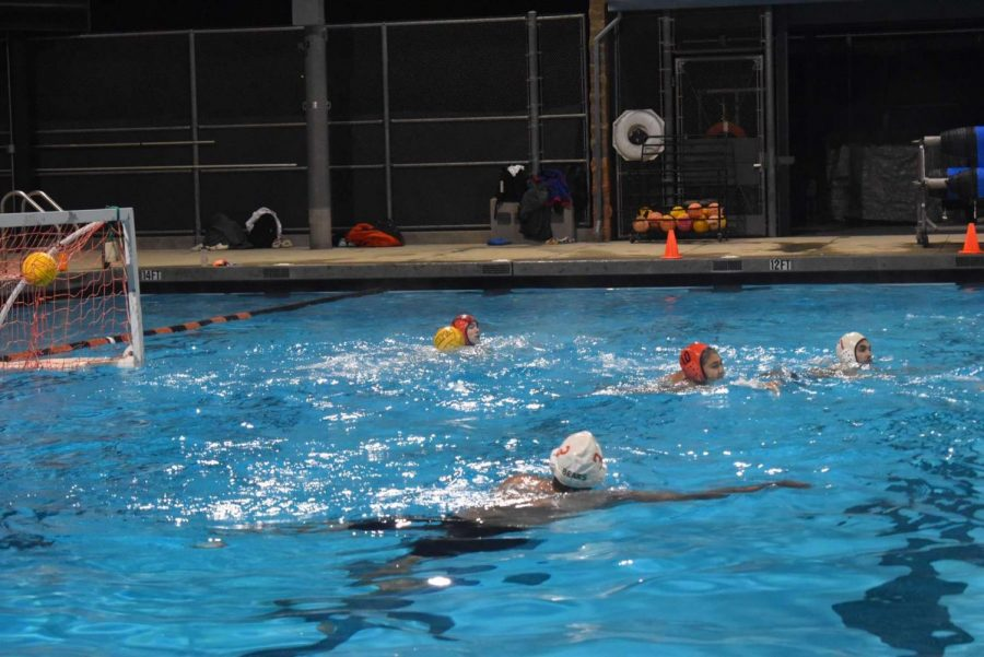 The polo team practicing by swimming laps