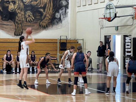 Lady Bears Playing a Home Game. Photo contributed by Brisa Pacheco.