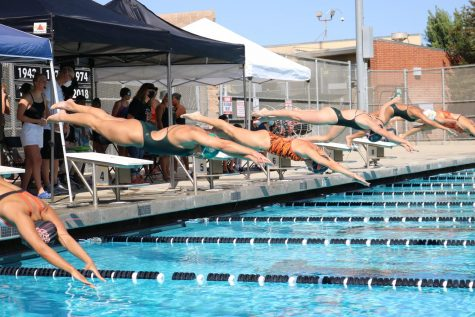 Swimmer Julianna Colado, dives into the water.